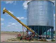 Grain contenu dans un silo